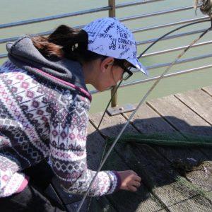 Pêche au carrelet sur le ponton