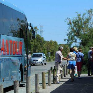 Bus devant la Cabane des Claires, ferme ostréicole