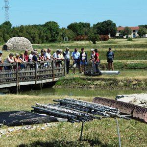 Visite de la ferme ostréicole dans le marais.