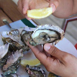 Assiette d'huîtres Marennes Oléron