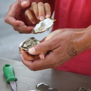 Initiation en famille à l'ouverture des huîtres