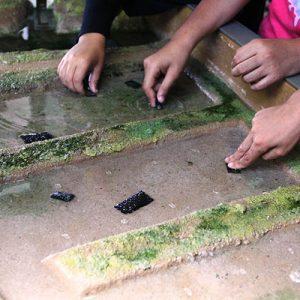 maquette-marais-hall-scolaires-perisoclaires-enfants-cite-de-lhuitre (2)