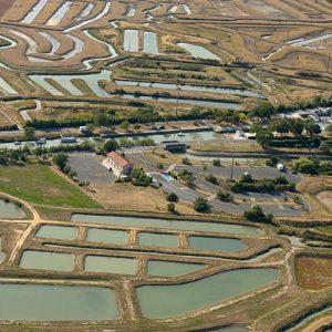 Vue aérienne du marais de la Seudre