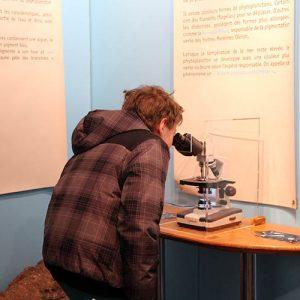 Microscope dans la Cabane Bleue