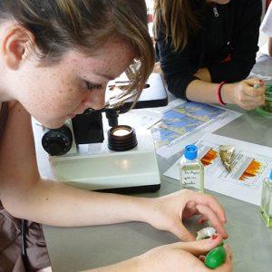 scolaires-college-reproduction-huitre-la-cite-de-lhuitre-marennes-charente-maritime