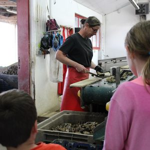 Démonstration du tri des huîtres par les femmes de cabane