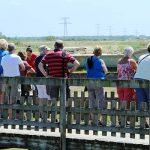 Visite du marais et de la ferme ostréicole